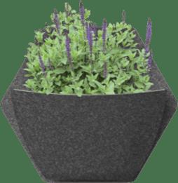 jardin vertical espora